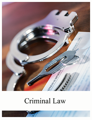 Image of book titled Saylor Foundation: Criminal Law